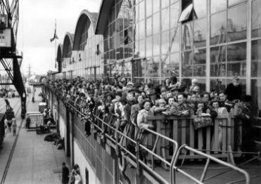 Niederländische Auswanderer im Rotterdamer Hafen, 1951